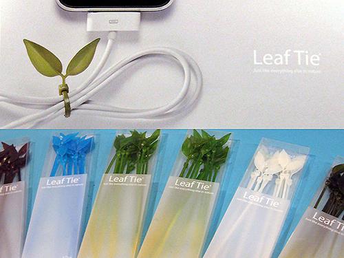 seoul-design fair-lufdesign-leaf tie