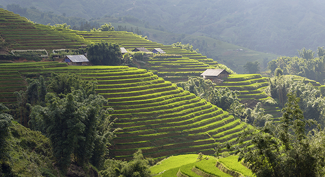 new york times 360: sapa, vietnam